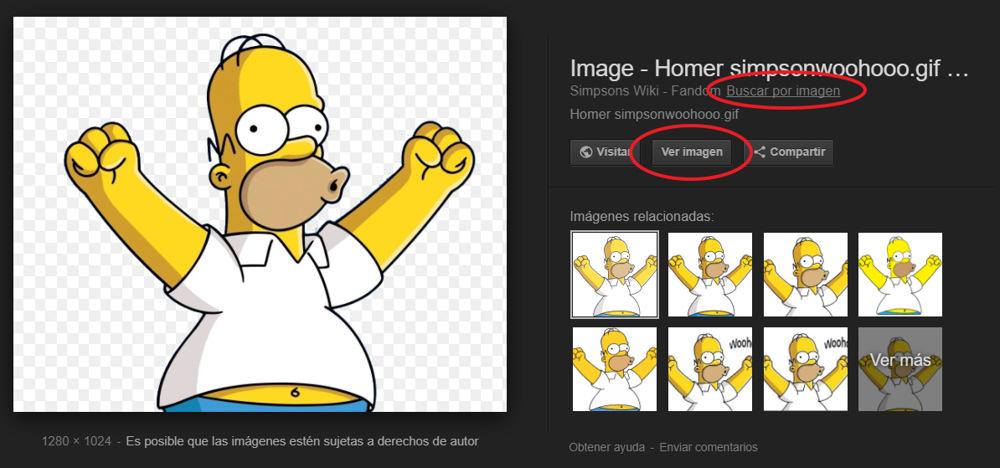 Boton Ver Imagen de Google